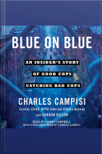 Blue On Blue: An Insiders Story Of Good Cops Catching Bad Cops