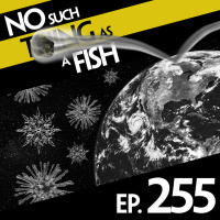 Episode 255: No Such Thing as a Bouncy Asteroid