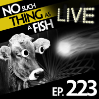 Episode 223: No Such Thing As A Worthless Doorstop