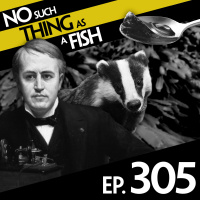 Episode 305: No Such Thing As A Sentient Jelly
