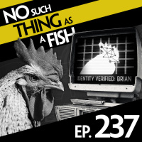 Episode 237: No Such Thing As A Closed-Minded Tortoise