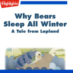 Why Bears Sleep All Winter