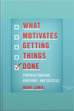 What Motivates Getting Things Done: Procrastination, Emotions, And Success