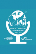 Amigo Animal - Notisistema