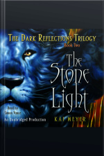 Dark Reflections Trilogy, Book 2, The: The Stone Light