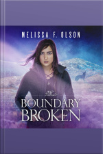 Boundary Broken Boundary Magic, Book 4