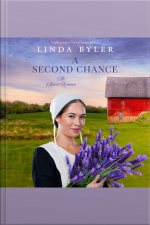A Second Chance An Amish Romance