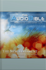 Audio Bible, The: Romans The New Testament