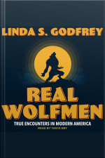Real Wolfmen True Encounters in Modern America