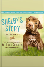 Shelbys Story A Dogs Way Home Tale