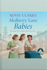 Mulberry Lane Babies Mulberry Lane, Book 3
