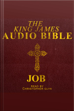 18. The Audio Bible - Job: Old Testament