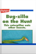 Bug-zilla on the Hunt