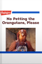 No Petting the Orangutans Please