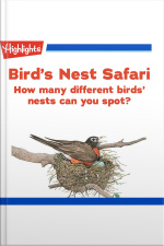 Birds Nest Safari