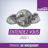 LECONOMIE EN QUESTION