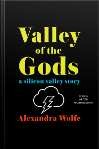 The Valley Of The Gods: A Silicon Valley Story