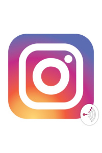 Everything Instagram