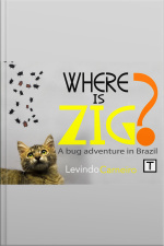 Where Is Zig?